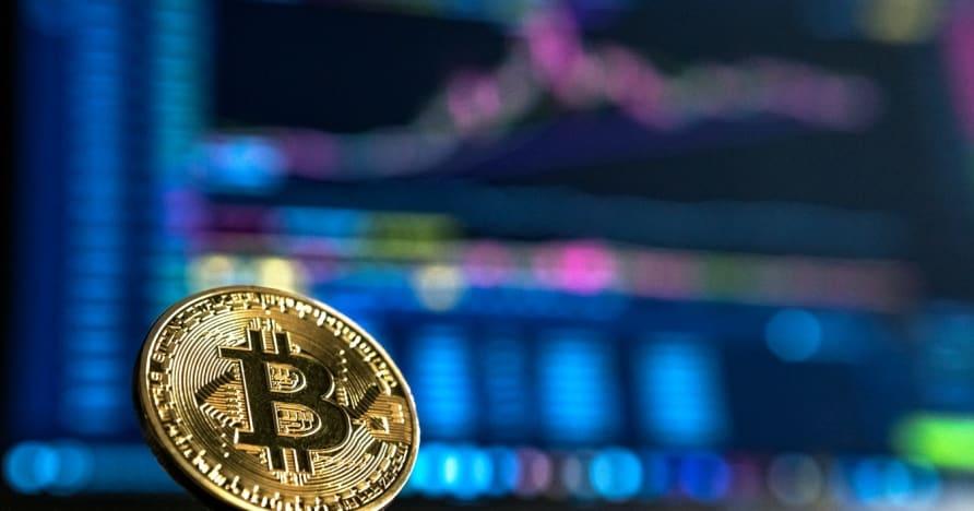 Kripto Para Birimi Kumarına Yeni Başlayanlar Kılavuzu